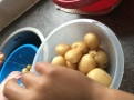 New potatoes 02